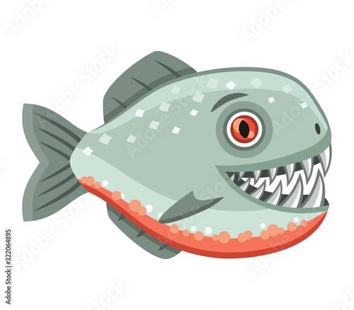 Fototapeta Scary piranha on white background, vector illustration