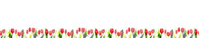 Watercolor Red Tulips, Seamless Banner That Can Be Tiled Horizontally. Watercolor Tulips Set Painting, Hand Drawn Illustration On White Background.