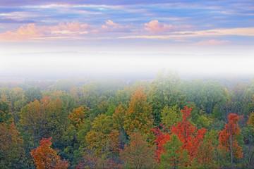 FototapetaFoggy dawn landscape with dramatic sky Kalamazoo River Valley, Michigan, USA