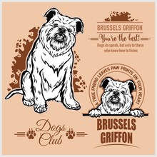Brussels Griffon - Vector Set ...