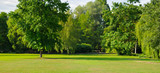Fototapeta  - Summer park with extensive lawns. Wide photo.