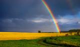 Fototapeta Rainbow - Rainbow