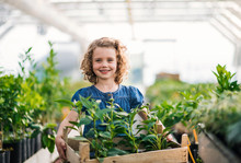 Small Girl Standing In The Greenhouse, Holding A Box With Plants.