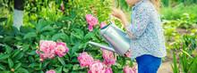 Child Watering Flowers In The Garden. Selective Focus.