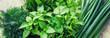 Leinwandbild Motiv Fresh homemade greens from the garden. Selective focus.