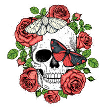 Skull And Butterflies Hand Drawn Sketch Illustration. Tattoo Vintage Print. Butterfly, Roses And Skull Vector Illustration. Sketch Print