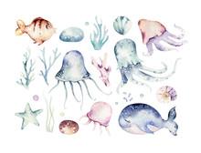 Set Of Sea Animals. Blue Water...