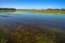 Flooded Meadow Linking Houghton And Hemingford Abbots Villages, Cambridgeshire, England, UK.