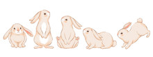 Set Of Cute Funny Rabbits In D...