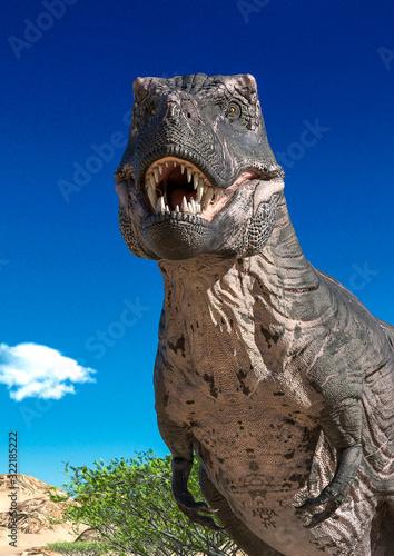 Obraz na plátně tyrannosaurus portrait on desert