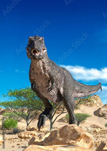 Fotografie, Obraz tyrannosaurus passing by and alone on desert