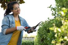Young Hispanic Woman Working O...