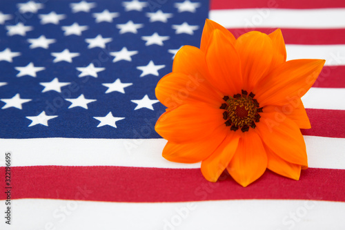 American flag and bright orange daisy combine as Memorial Day remembrance Canvas Print