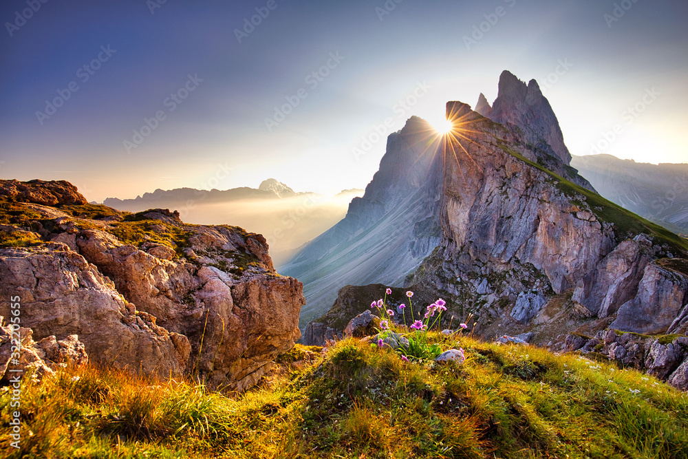 Fototapeta Amazing view on Seceda peak. Trentino Alto Adige, Dolomites Alps, South Tyrol, Italy, Europe. Odle mountain range, Val Gardena. Majestic Furchetta peak. Purple flowers in the morning sunlight.