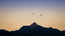 Panorama Of The Silhouette Of A Mountain Range With 3 Birds Soaring In The Sky