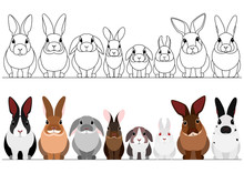 Set Of Rabbits Border