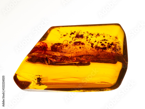 Fotografie, Obraz P1010008 Piece of baltic amber with insect inclusions, isolated cECP 2020