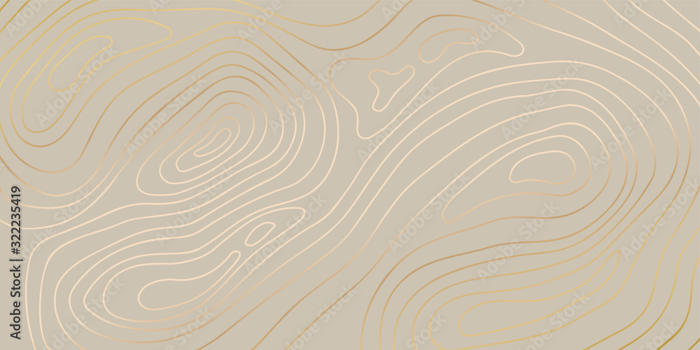 Fototapeta Luxury gold abstract topographic map background with golden lines  texture, 17:9 wallpaper design for fabric , packaging , web, geographic grid map vector illustration.