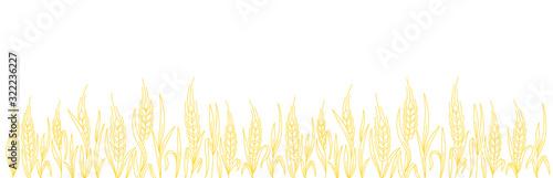 Cereal field Wallpaper Mural