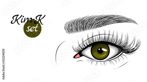 Vector illustration of dark green female eye with extended eyelashes and eyebrow Canvas Print