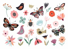 Butterflies, Flowers And Birds...