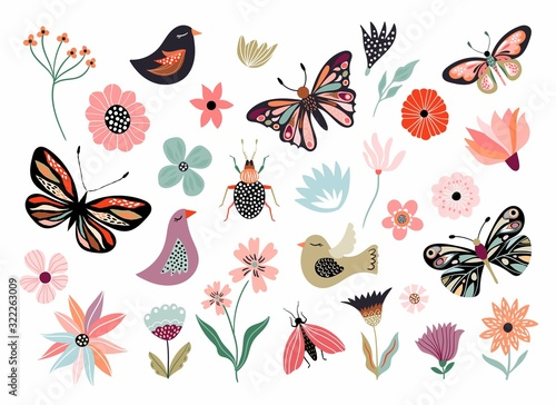 Fotografia Butterflies, flowers and birds hand drawn collection of different element, isola