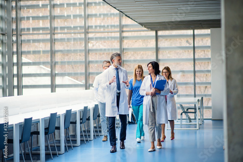 Group of doctors walking in corridor on medical conference. Poster Mural XXL