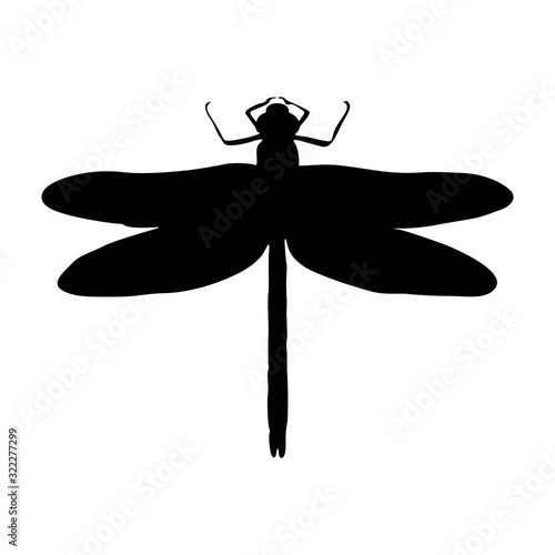 Dragonfly (Anisoptera) Silhouette Vector Found In Map Of Worldwide Canvas Print