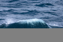 White Crest Of A Sea Wave. Sel...