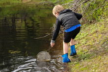 Young Boy Catching Tadpoles In Natural Water Hole With Net And Bucket