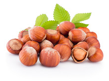 Hazelnuts With Green Leaves Is...