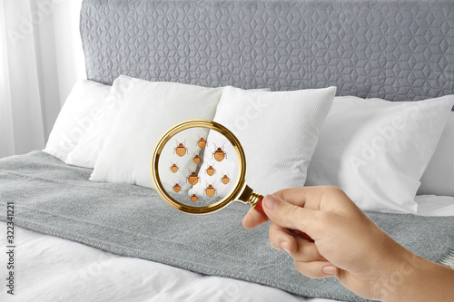 Fotografia Woman with magnifying glass detecting bed bugs on bed, closeup