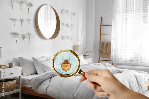Woman with magnifying glass detecting bed bug, closeup Fotobehang