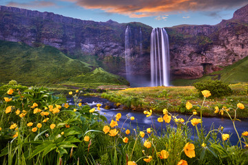 Fototapeta Popularne Incredible sunset on Seljalandsfoss. One of the most beautiful waterfalls on the Iceland, Europe. Popular and famous tourist attraction summer holiday destination in on South Iceland. Travel postcard.