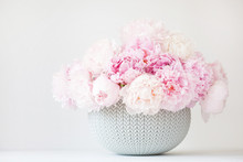 Beautiful Pink Peony Flowers B...