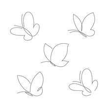 Butterfly Continuous Line Vect...