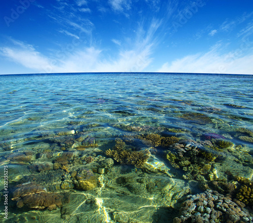Red sea coral reef and sky.
