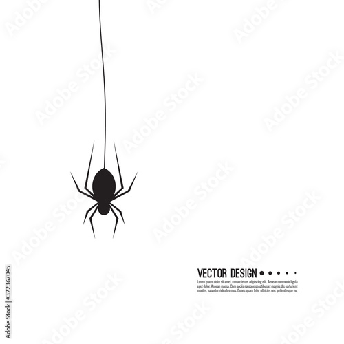 Vector illustration of creepy spider web and a spider. Decoration cobweb for Halloween Wall mural