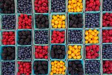 Farmers Market Bounty