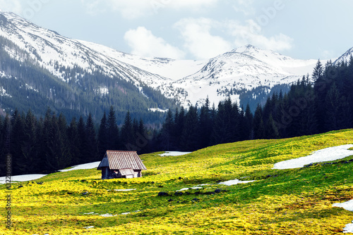 Fototapeta Old wooden hut in spring High Tatras mountains in Kalatowki meadow, Zakopane, Poland. Landscape photography obraz