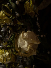 Wilted White Roses In A Vase I...