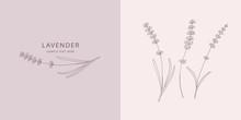 Card With Lavender. Vector Ske...