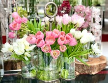 Tulips And Orchids In Glass Vases.