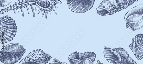 Obraz na płótnie Hand-drawn seashells vector blue background