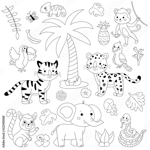 Coloring Page Of Cartoon Jungle Animals And Birds Tropical Plants Flowers And Palm Tree Black And White Illustration Kawaii Vector Characters Stock Vector Adobe Stock