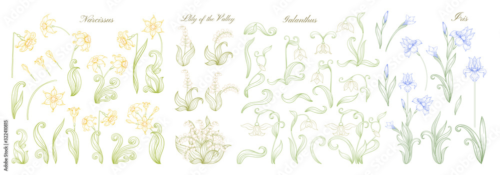 Fototapeta Set of spring flowers: iris, lily of the valley, snowdrop, daffodil. In art nouveau style, vintage, old, retro style. Outline vector illustration.