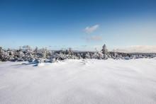 Winter Landscape At Hornisgrinde, Black Forest, Germany