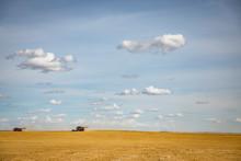 Combine Harvesters Harvesting ...