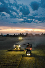 Combine Harvesters And Trailer In Rural Field At Dusk, Harvesting Crop