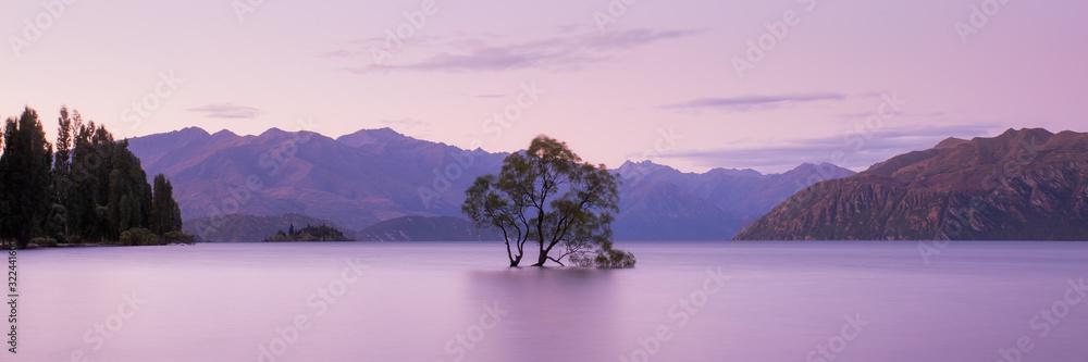 Fototapeta That Wanaka Tree at Sunset, Lake Wanaka New Zealand, Popular Travel Destination South Island, NZ